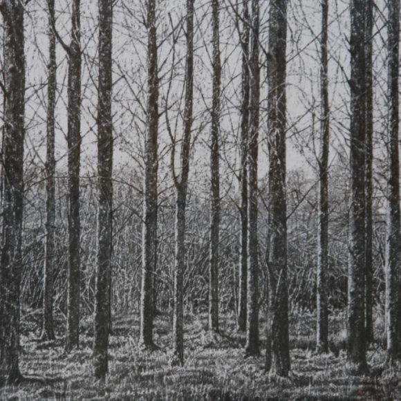 Terry McAllister exhibition @ The Naughton Gallery