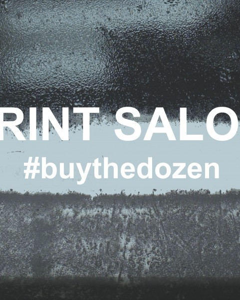 Print Salon - Belfast Print Workshop and QSS Gallery
