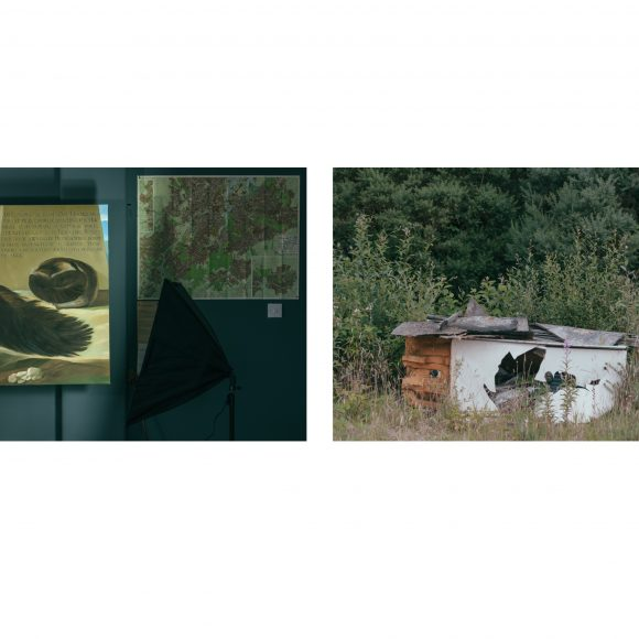 David Haughey – Artist of the Month