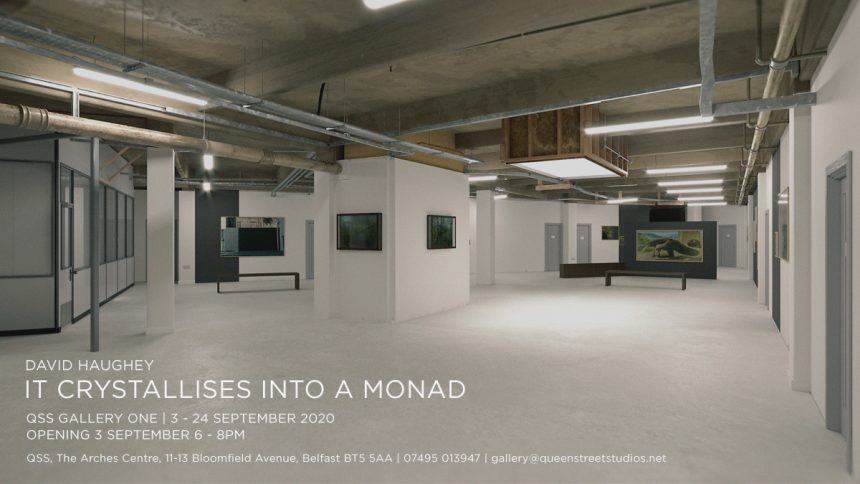 David Haughey | It Crystallises into a Monad at QSS Gallery