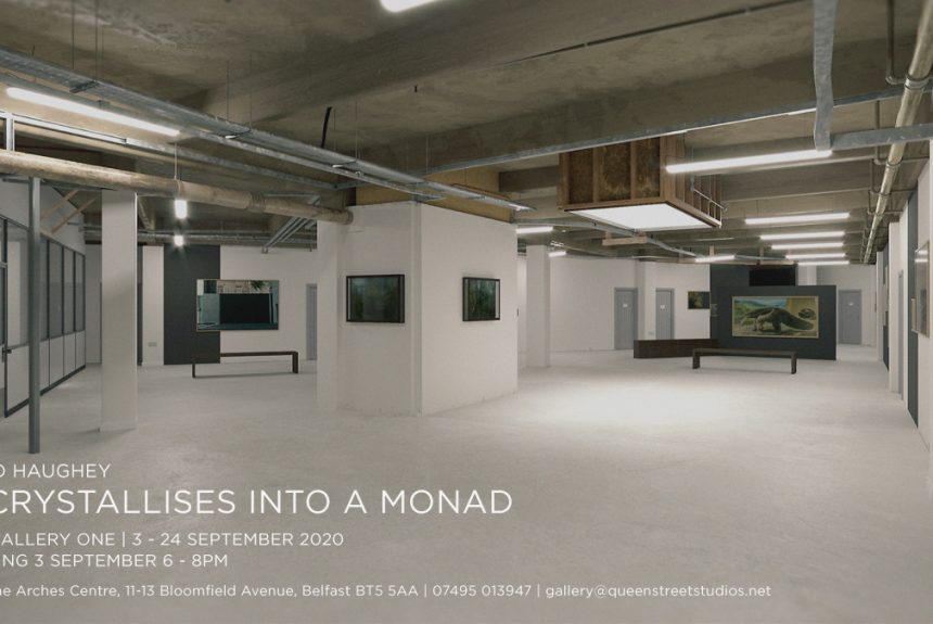 David Haughey   It Crystallises into a Monad at QSS Gallery