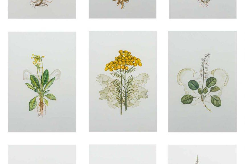 Jennifer Trouton wins Watercolour Prize at RUA
